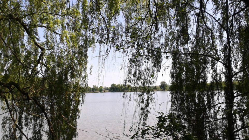 Jistebnické rybníky
