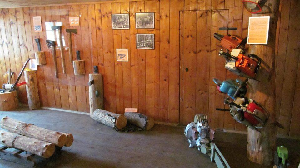 Expozice lesnictví ve 2. patře