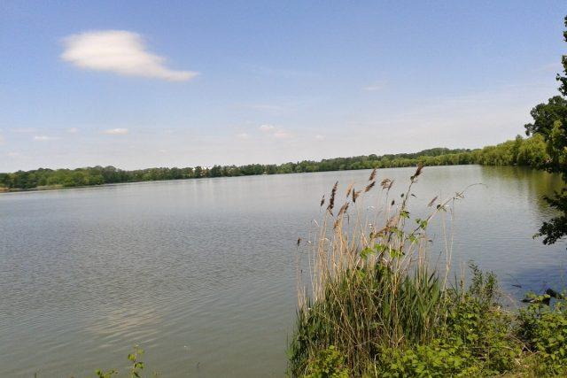 Jistebnické rybníky   foto: Naďa Čvančarová