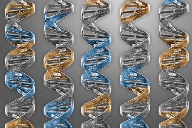 Vědci vytvořili bakterii, které ponechali vdědičné informaci jen životně nezbytné geny