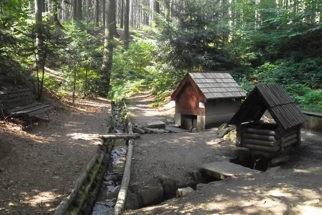 Prameny Zrzávky v Hostašovicích jsou od roku 1993 přírodní památkou