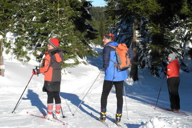 Běžkaři v Krušných horách