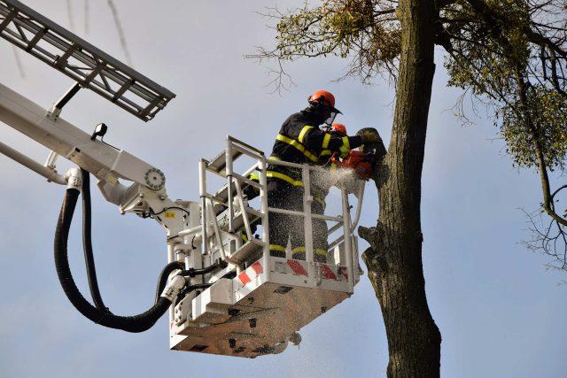 Hasiči kácí strom u novojičínské části Skalky