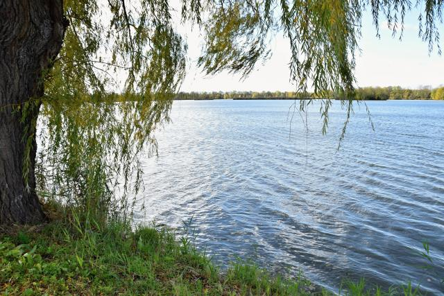 Rybník Bezruč je největší v kraji