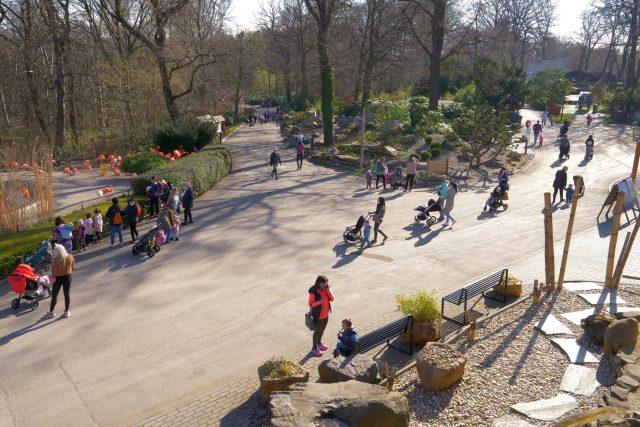 Ostravská zoo krátce po otevření