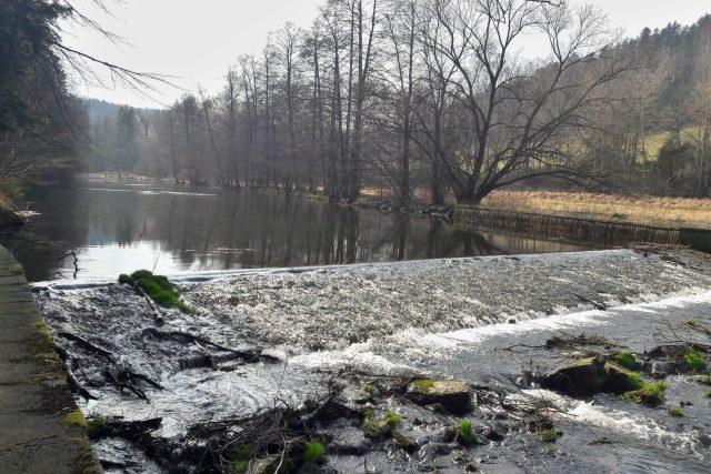 Řeka Moravice pod nádrží Kružberk | foto: František Tichý,  Český rozhlas