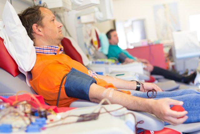 Darování krve, dárcovství, krev, odběr, transfúzní stanice, dárce krve, nemocnice