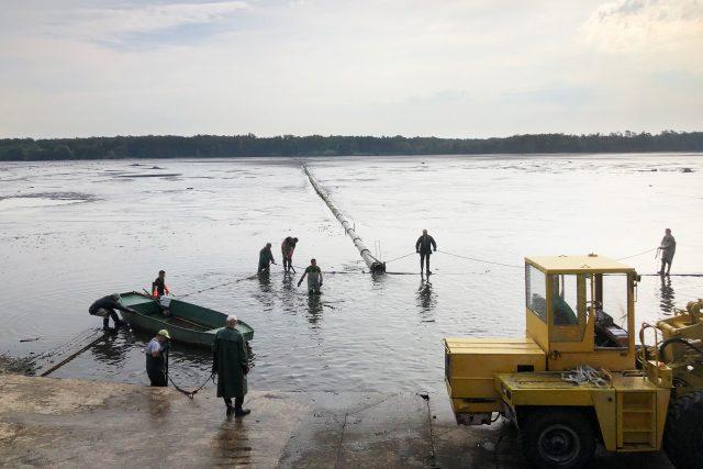 Výlov rybníku Buňkov začal kvůli nákaze virem v netradičním letním období